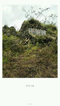 拉市海茶马古道旅游景点攻略图