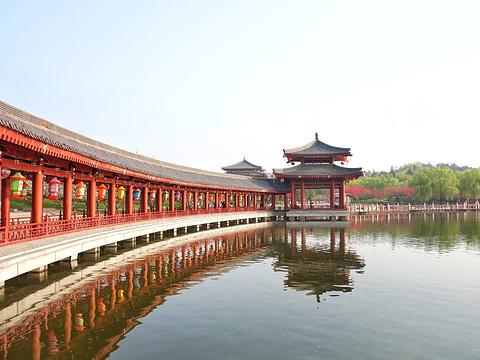 大唐芙蓉园旅游景点图片