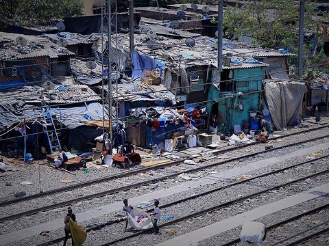 达哈维贫民窟旅游景点图片