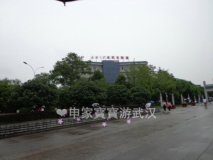 武汉大学、江汉路步行街、沿江大道、昙华林图片