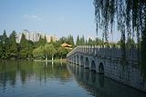逍遥津公园