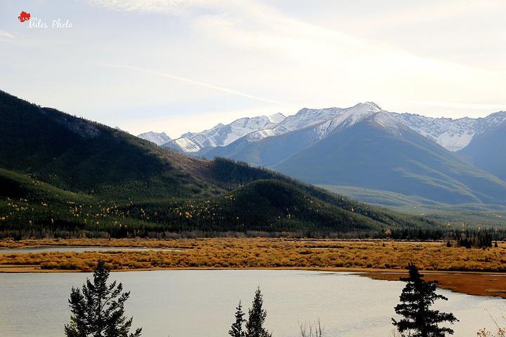"""""""一路继续前行,过了露易斯湖,快到班夫镇前..._冰原大道""""的评论图片"""