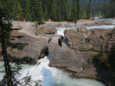 天然桥旅游景点图片
