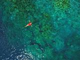 科罗尔岛旅游景点攻略图片