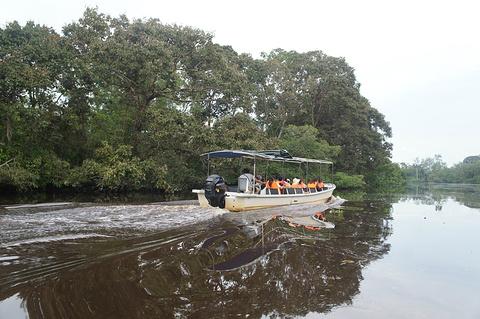 亚庇市湿地中心旅游景点攻略图