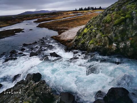 辛格维尔国家公园旅游景点图片