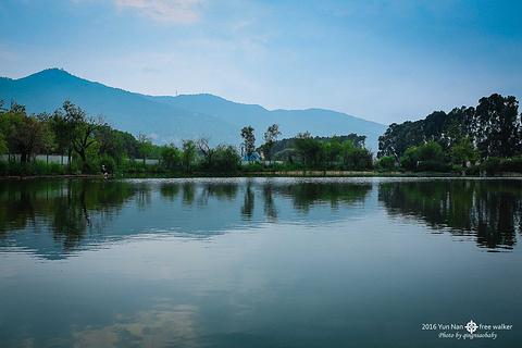 呈贡·滇池生态湿地公园