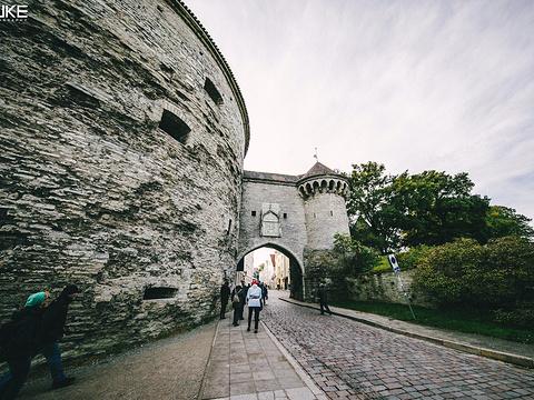胖玛格丽特堡垒旅游景点图片