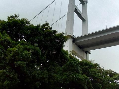 虎门大桥旅游景点图片