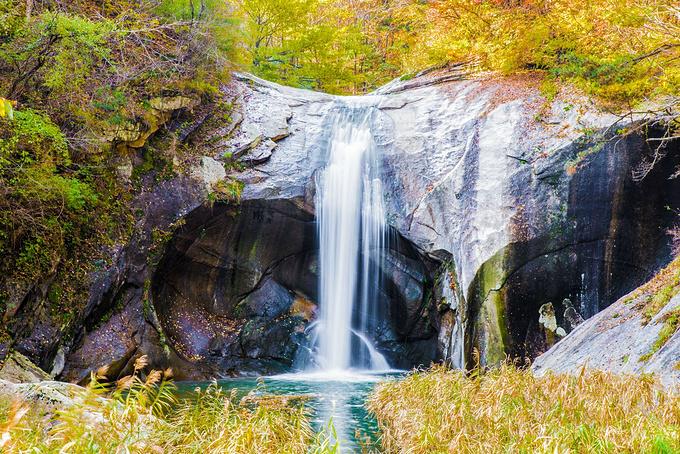 九龙大峡谷图片
