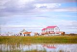 达里湖北岸