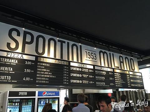 Pizzeria Spontini(Via Gaspare Spontini)旅游景点图片