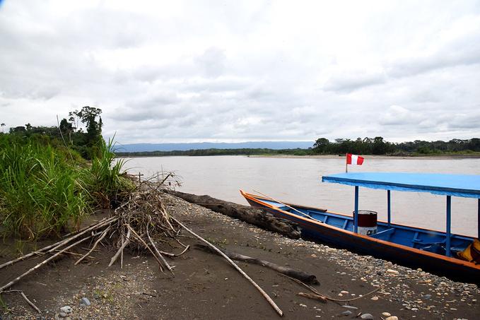 亚马逊雨林:一条大河图片