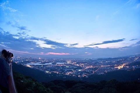 紫金山旅游景点攻略图
