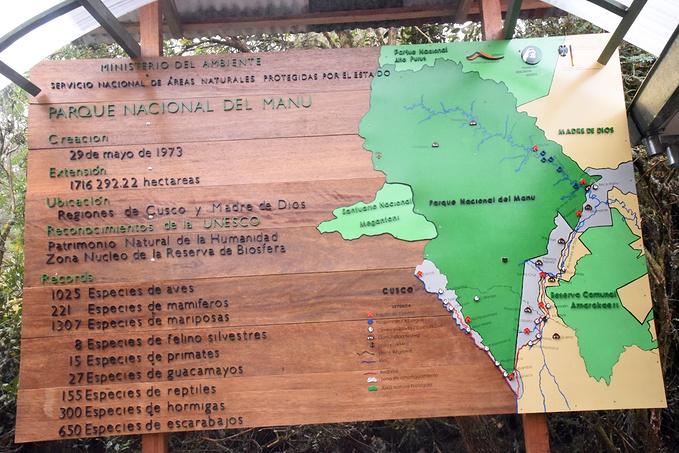 亚马逊雨林:初体验图片