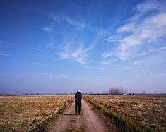 秋末冬初,湖北汉川乡村游