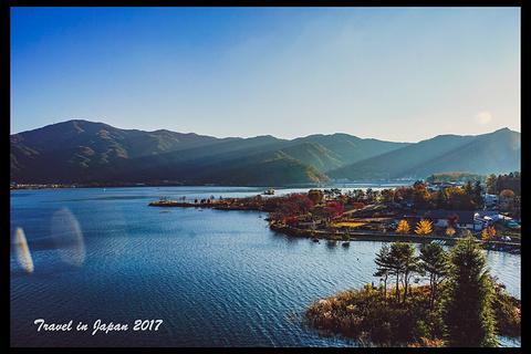 河口湖旅游景点攻略图