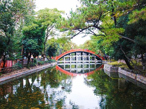 住吉大社旅游景点图片