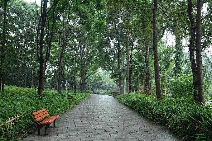 浣花溪公园走一走,过点悠闲生活图片