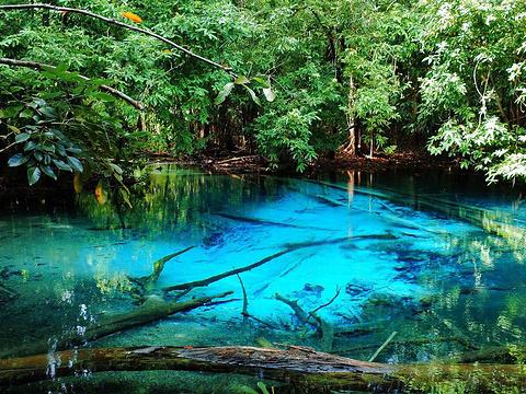 翡翠池(SRA莫拉克)旅游景点图片
