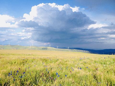 空中草原旅游景点图片