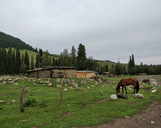 听风,看雨,随心而走。。。新疆乌鲁木齐篇