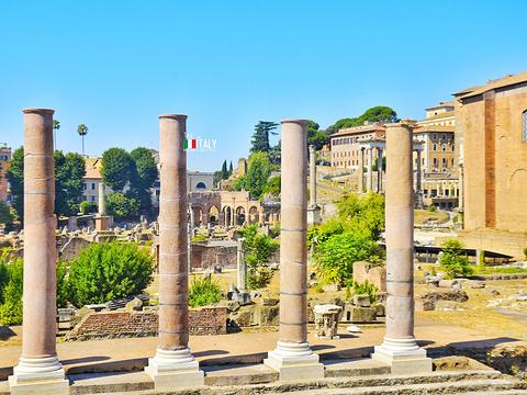古罗马广场旅游景点图片