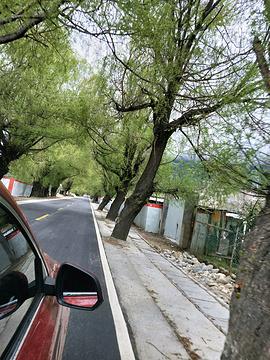 雅鲁藏布大峡谷旅游景点攻略图