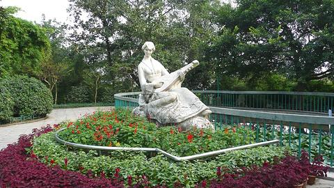 枇杷山公园的图片