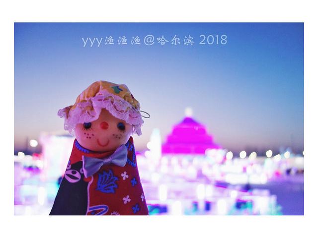"""""""突然想起在知乎上看过的一个问答:""""哈尔滨冰雪大世界好玩吗?冰雪终有一天会消融,唯有美好的记忆成永恒_哈尔滨冰雪大世界""""的评论图片"""