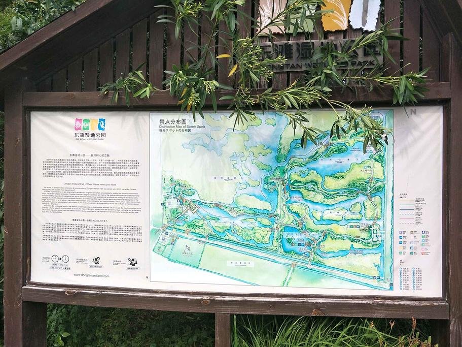 东滩湿地公园旅游导图