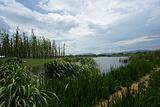 呈贡斗南湿地