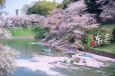 东京旅游图片