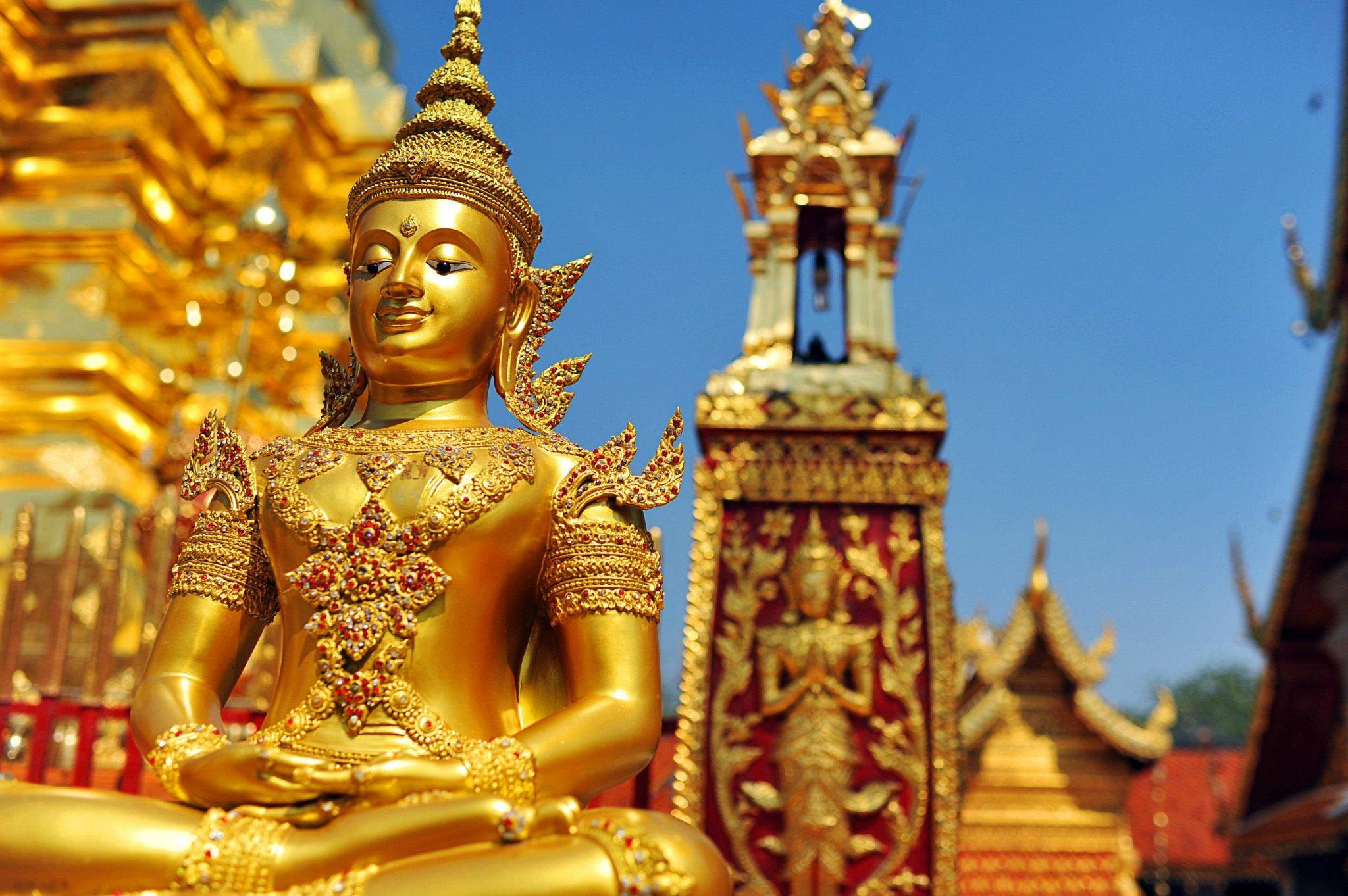 泰国动物世界