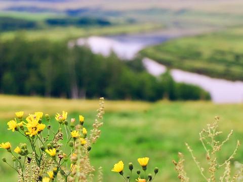 室韦俄罗斯民族乡旅游景点图片