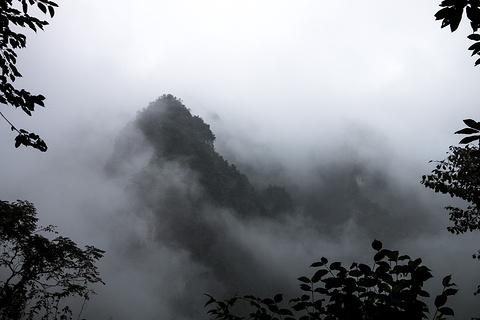 九老仙府旅游景点攻略图