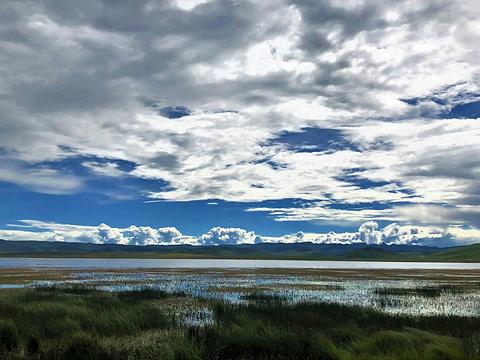 尕海湖旅游景点图片