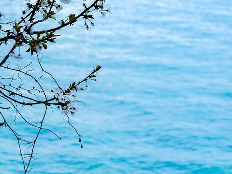 科尔尼利亚旅游景点图片