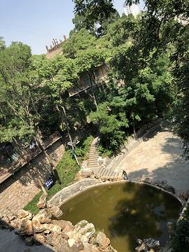 五泉山公园