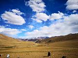 扎达尔旅游景点攻略图片