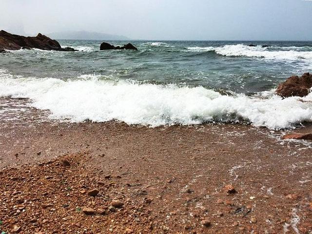 """""""这里的景色很美,海边有大片的红褐色礁石,礁石上常常会三三两两的坐着写生的学生,这种写意的生活着..._鲁迅公园""""的评论图片"""