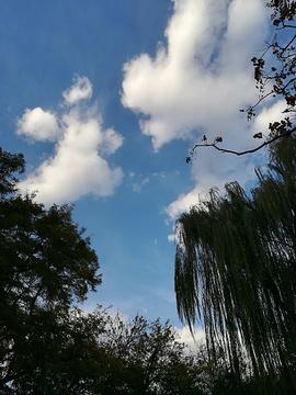 北京动物园旅游景点攻略图