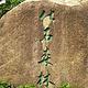 仙湖化石森林