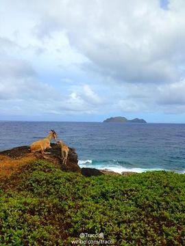 兰屿旅游景点攻略图