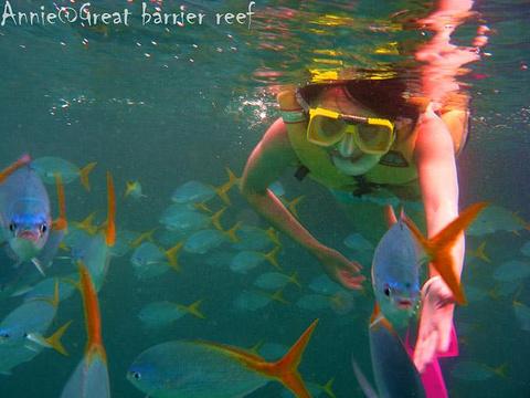 大堡礁旅游景点攻略图