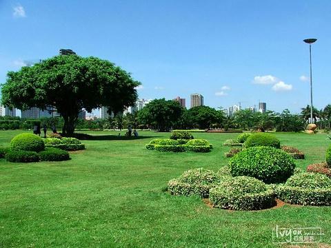 万绿园旅游景点图片