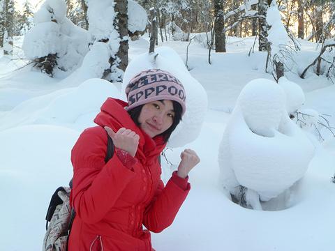 中国雪乡旅游景点攻略图