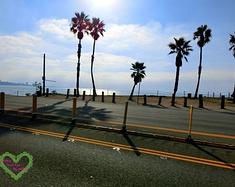 美国西海岸自驾游