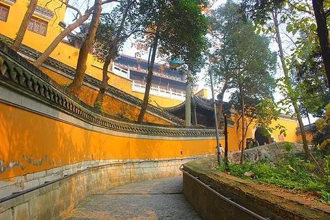 唐城遗址博物馆旅游景点攻略图