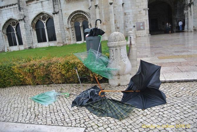 垃圾桶残骸艺术品展览图片